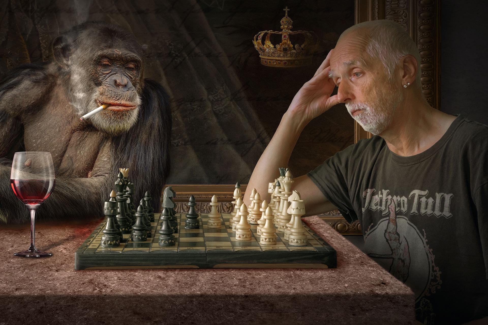 Affe Schach